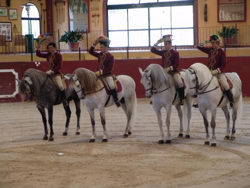 Tour Spain 2008